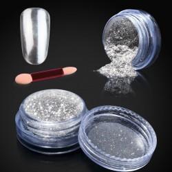 Veidrodinio efekto sidabro pudra